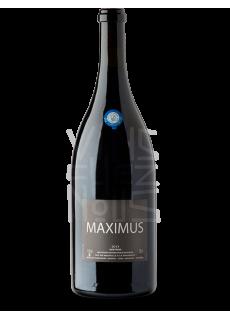 Nicolas Carmarans Maximus Magnum