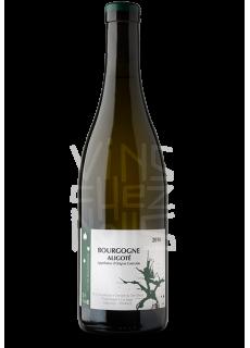 Clair Obscur Bourgogne Aligoté