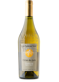 Valentin morel Chardonnay Saint Savin