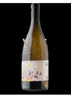 vin des potes bloom magnum