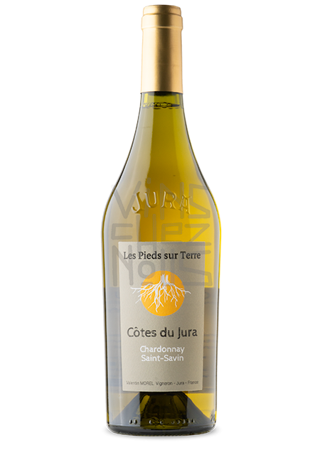 Chardonnay Saint Savin